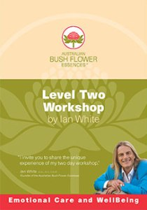 Level Two Workshop DVD
