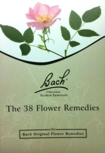 38 Flower Remedy Book