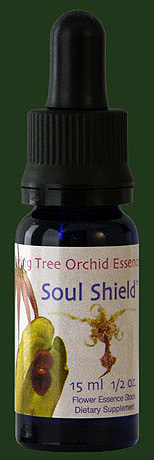 Soul Shield +